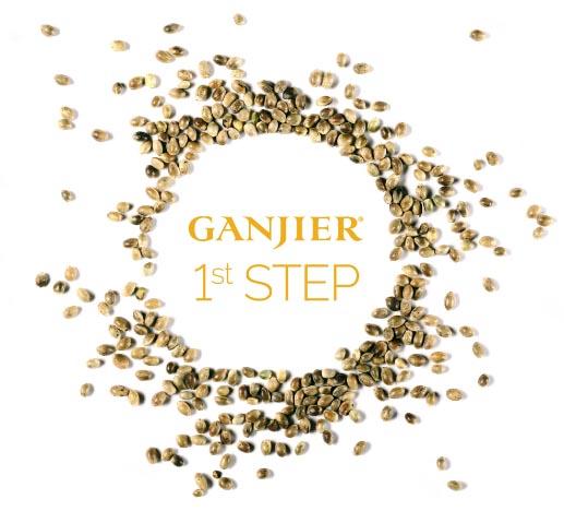 Ganjier First Step Seeds
